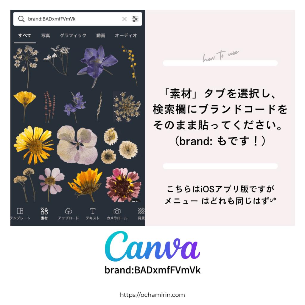 canvaブランドコードの検索方法